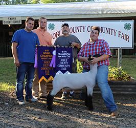 Riecke Club Lambs | Winners